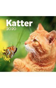 Kalender 2020 Baccara 18x18 Katter