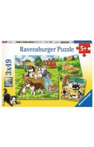 Puslespill 3X49 Katter Og Hunder Ravensburger