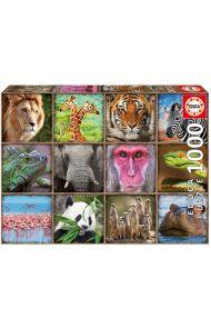 Puslespill Educa 1000 Wild Animals Collage