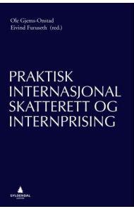 Praktisk internasjonal skatterett og internprising