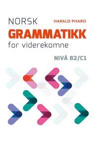 Norsk grammatikk for viderekomne