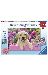 Puslespill Ravensburger 2X24 Hundevalper