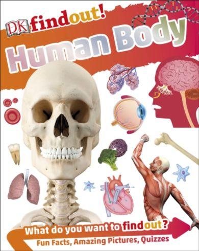 DKfindout! Human Body