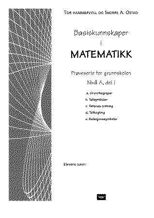 Basiskunnskaper i matematikk
