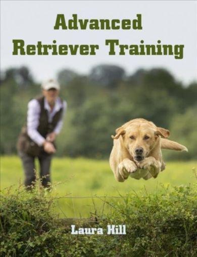 Advanced Retriever Training