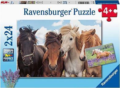 Puslespill 2X24 Hester Ravensburger