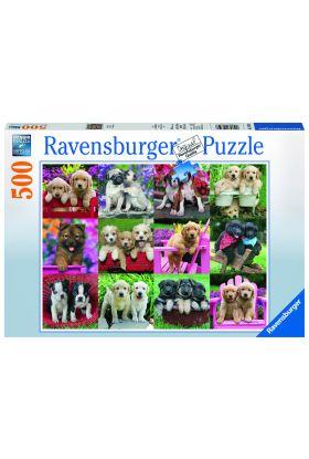Puslespill 500 Puppy Ravensburger