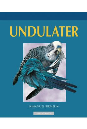 Undulater