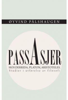 Passasjer