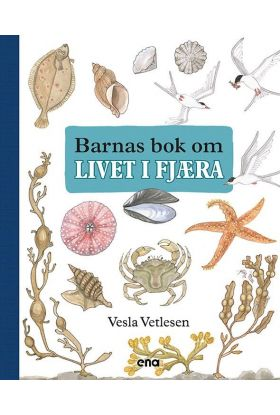 Barnas bok om livet i fjæra