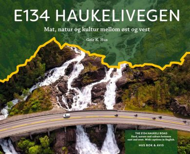 E134 Haukelivegen