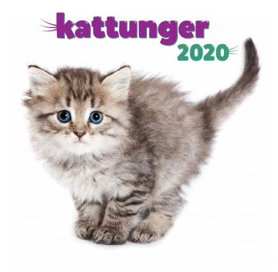 Kalender 2020 Baccara 18x18 Kattunger