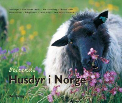 Beitende husdyr i Norge