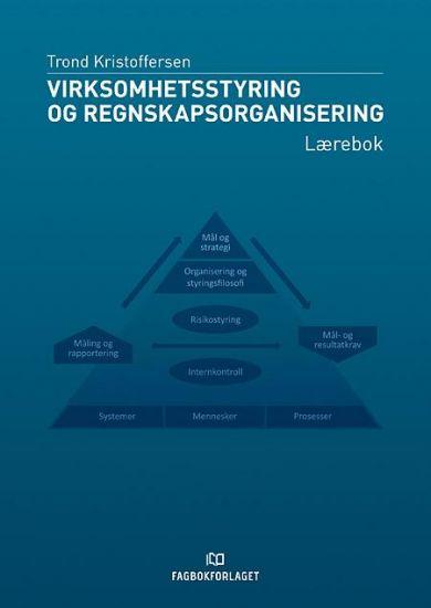 Virksomhetsstyring og regnskapsorganisering