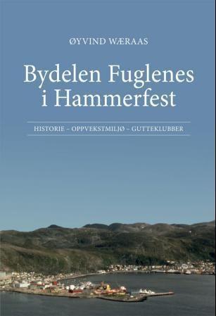 Bydelen Fuglenes i Hammerfest