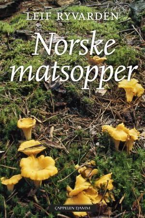 Norske matsopper