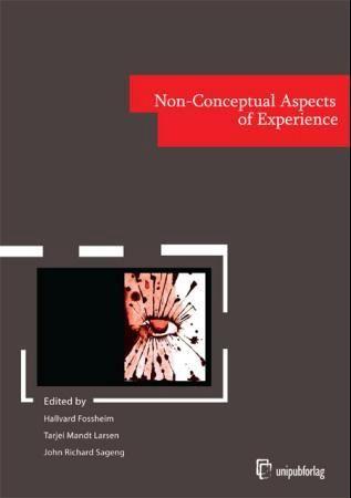 Non-conceptual aspects of experience