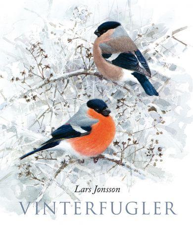 Vinterfugler