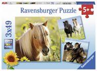 Puslespill 3X49 Hester Ravensburger