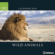 Kalender 2021 30x30cm Wild Animals