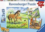 Puslespill 3X49 Dyreportretter Ravensburger