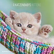 Kalender 2022 Kittens 30X30cm