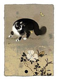 Kort 167x118 Paper og foil Cat  Butterflies