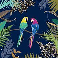 Kort Sara Miller Parrots
