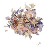 Wedding Pastel Petal Confetti Sml