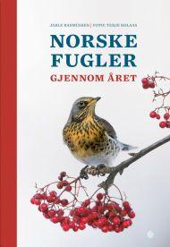 Norske fugler igjennom året