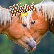 Kalender 2021 18x18cm Hester