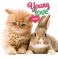 Kalender 2021 18x18cm Young Love
