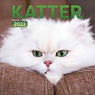 Kalender 2022 Katter 18X18cm