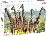 Puslespill 1000 Tall Giraffes  Tactic