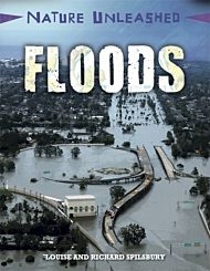 Nature Unleashed: Floods