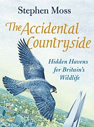 The Accidental Countryside