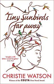 Tiny Sunbirds Far Away