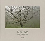 Joel Sternfeld: Our Loss