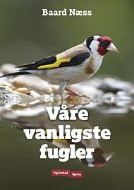 VÃ¥re vanligste fugler