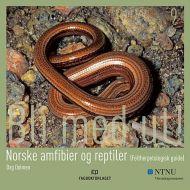 Norske amfibier og reptiler (feltherpetologisk guide)