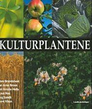 Kulturplantene