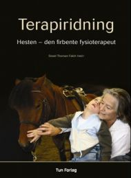 Terapiridning