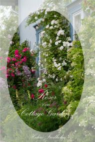 Roser i en cottage garden