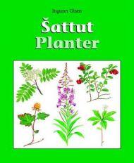Sattut = Planter