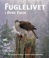 Fuglelivet i Øvre Eiker