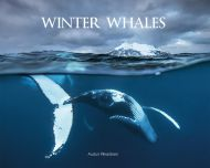 Winter whales