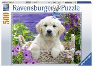 Puslespill 500 Golden Retriever Ravensburger
