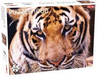 Puslespill 1000 Tiger Tactic