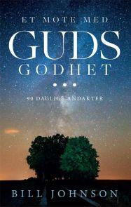 Et møte med Guds godhet