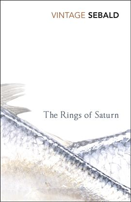 Rings Of Saturn, The